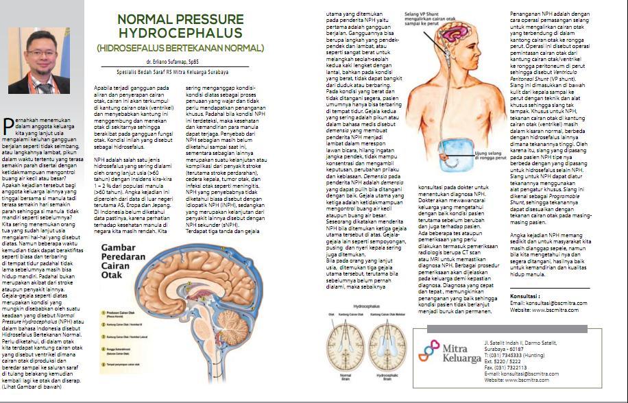 Apakah Normal Pressure Hydrocephalus (NPH)?